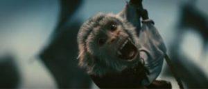 La maledizione della prima luna scimmia-curiosity-movie