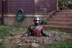 formicaio-ant-man-curiosity-movie
