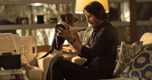 john wick beagle curiosity movie