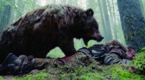 the revenan orso curiosity movie