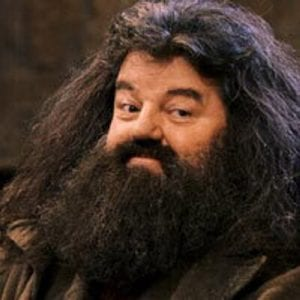 Harry Potter e la pietra filosofale Robbie Coltrane curiosity movie