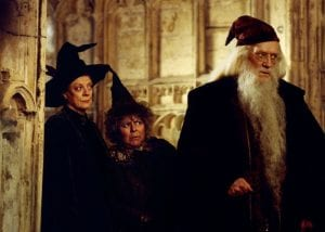 Harry Potter e la camera dei segreti richard harris curiosity movie