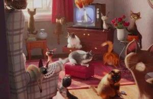 Pets presentatore curiosity movie